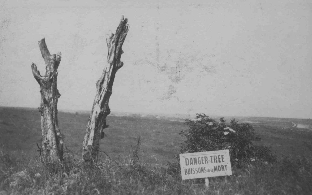 The Danger Tree, as it became known following the Battle of Beaumont-Hamel, was a solitary tree that remained standing on the battlefield, despite being ravaged by shell and gunfire from both sides. Many Newfoundlanders converged on the location attempting to advance and it was there that many of them fell. Photo taken circa 1925 PHOTO: Coll-308 Thomas Nangle Collection 1.25.010 Danger Tree, Archives and Special Collections, QEII Library, Memorial University.