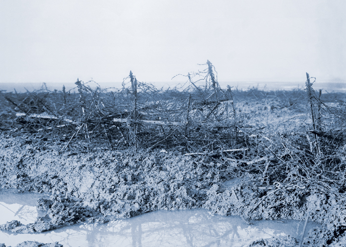 German barbed wire entanglements, known as ' knife rests', photographed in the Beaumont-Hamel area, 1916