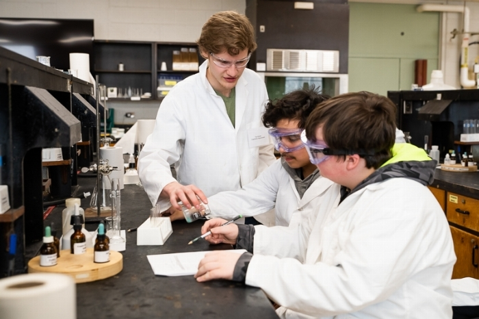 Two students receive guidance from an Undergraduate student lab assistant during their study of a single displacement reaction in Chemistry.