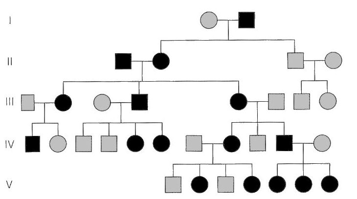 pedigree and probability Mendelian genetics, probability, pedigree, and chi-square statistics-hhmi biointeractive-a lesson that requires students to work through a series of questions.