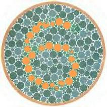 Colour Deficiency Test